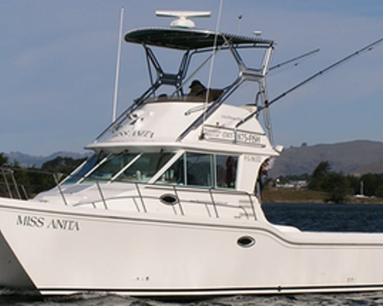 Since 1983 bodega bay inn for Bodega bay fishing charters