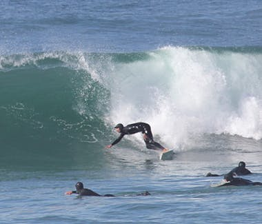 Surfing, pacific ocean, salmon creek, bodega bay inn