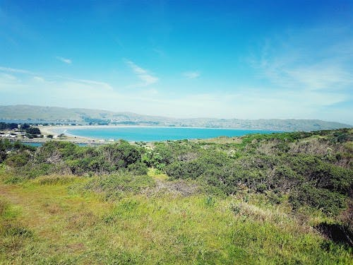 Bodega bay, hiking, bodega bay inn