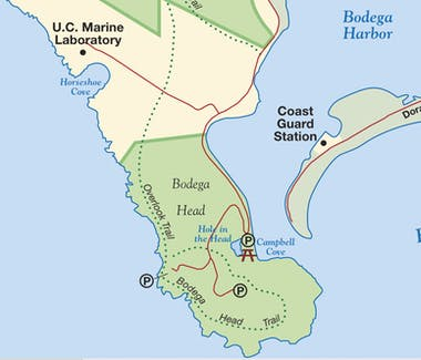 Bodega head, bodega head, Bodega Bay Inn, fisherman, commercial fishing