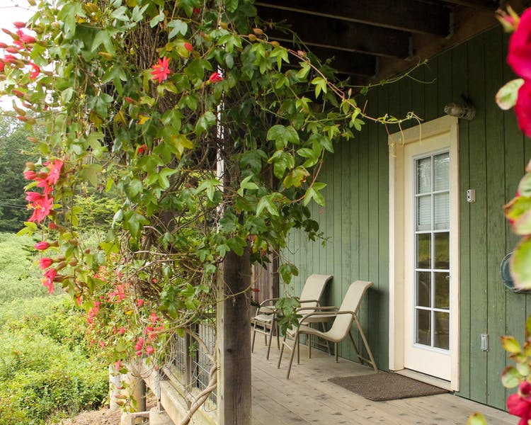 Beautiful landscaped grounds, flowers, vegetation, relaxing, bodega bay inn
