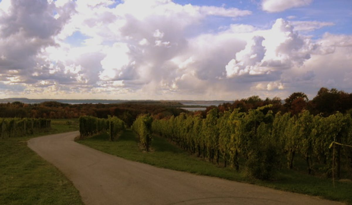 Winery on Old Mission Peninsula