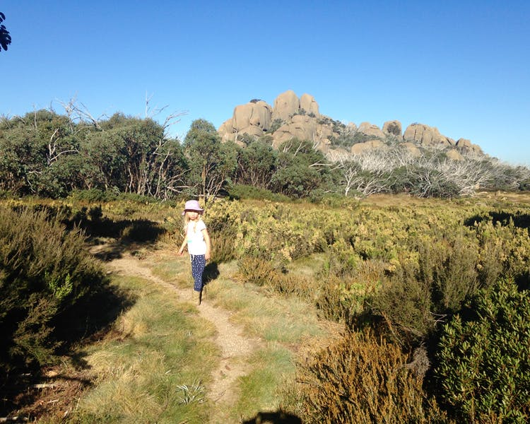 Walking at Mount Buffalo National Park