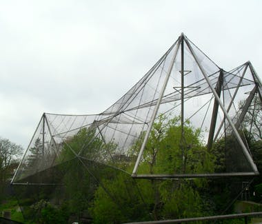 The Aviary at London Zoo