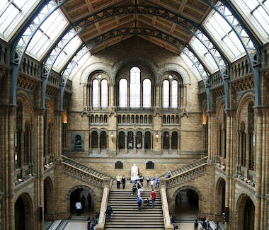 The main hall of the Natural History Museum