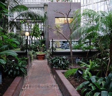 The Barbican Centre Conservatory