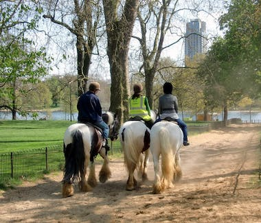 Hyde Park Stables