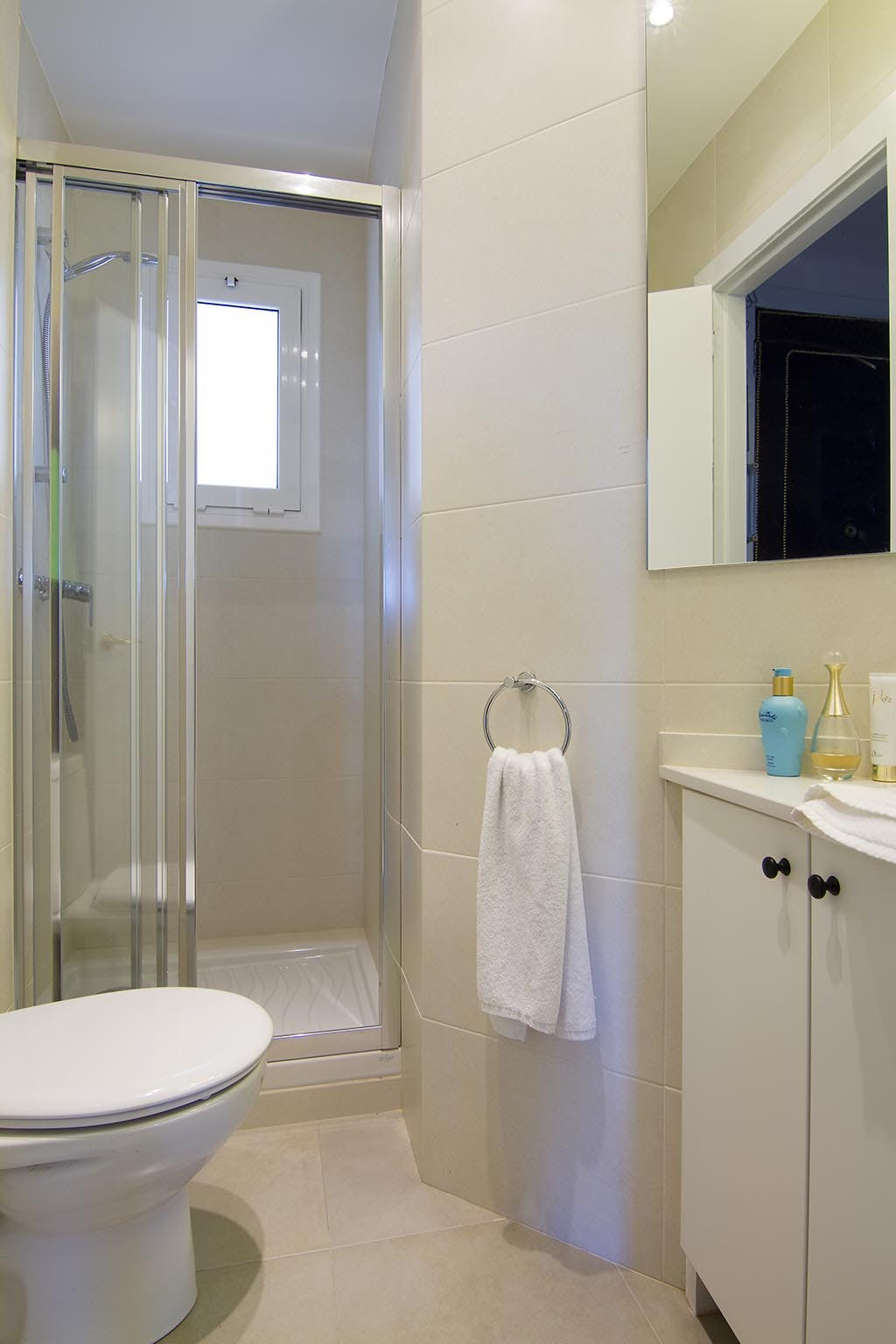 Three-Bedroom apartment bathroom with shower