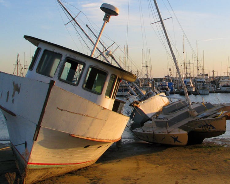 boats in harbor at low tide