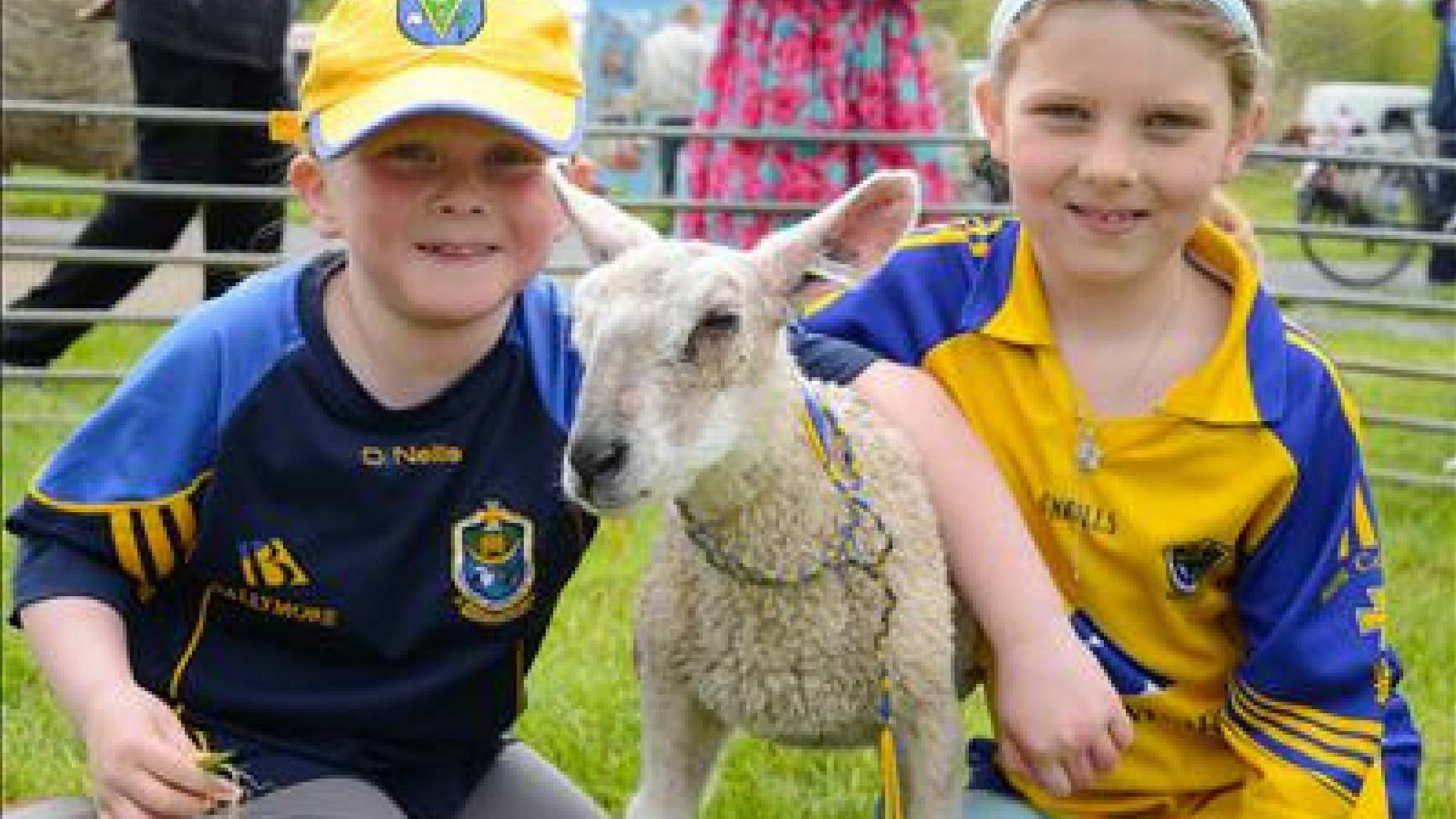 Roscommon Lamb Festival, supported by Gleesons Restaurant & Rooms, Roscommon
