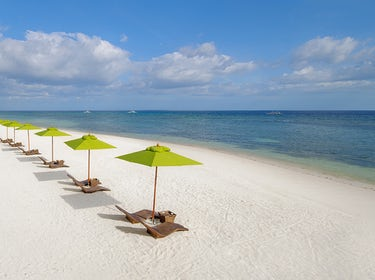 White Sand Panglao Beach Alona Beach Bohol Beach Bohol South Palms 1