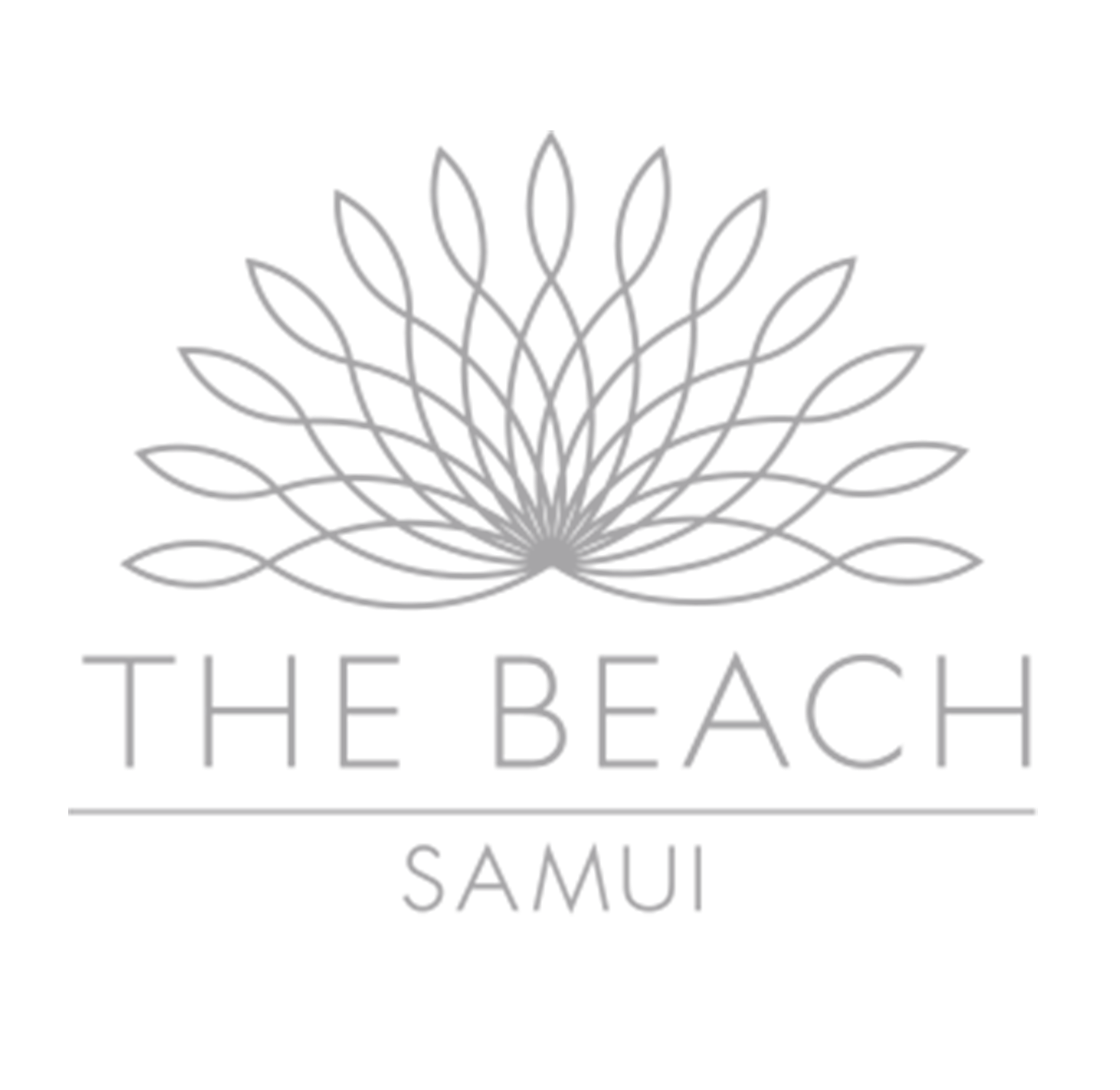 The Beach Samui