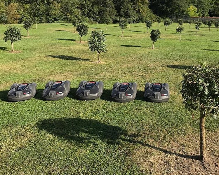Best investment ever. Our 5 Husqvarna 450X take care of 3 ha of lawn at Chateau Valcreuse.