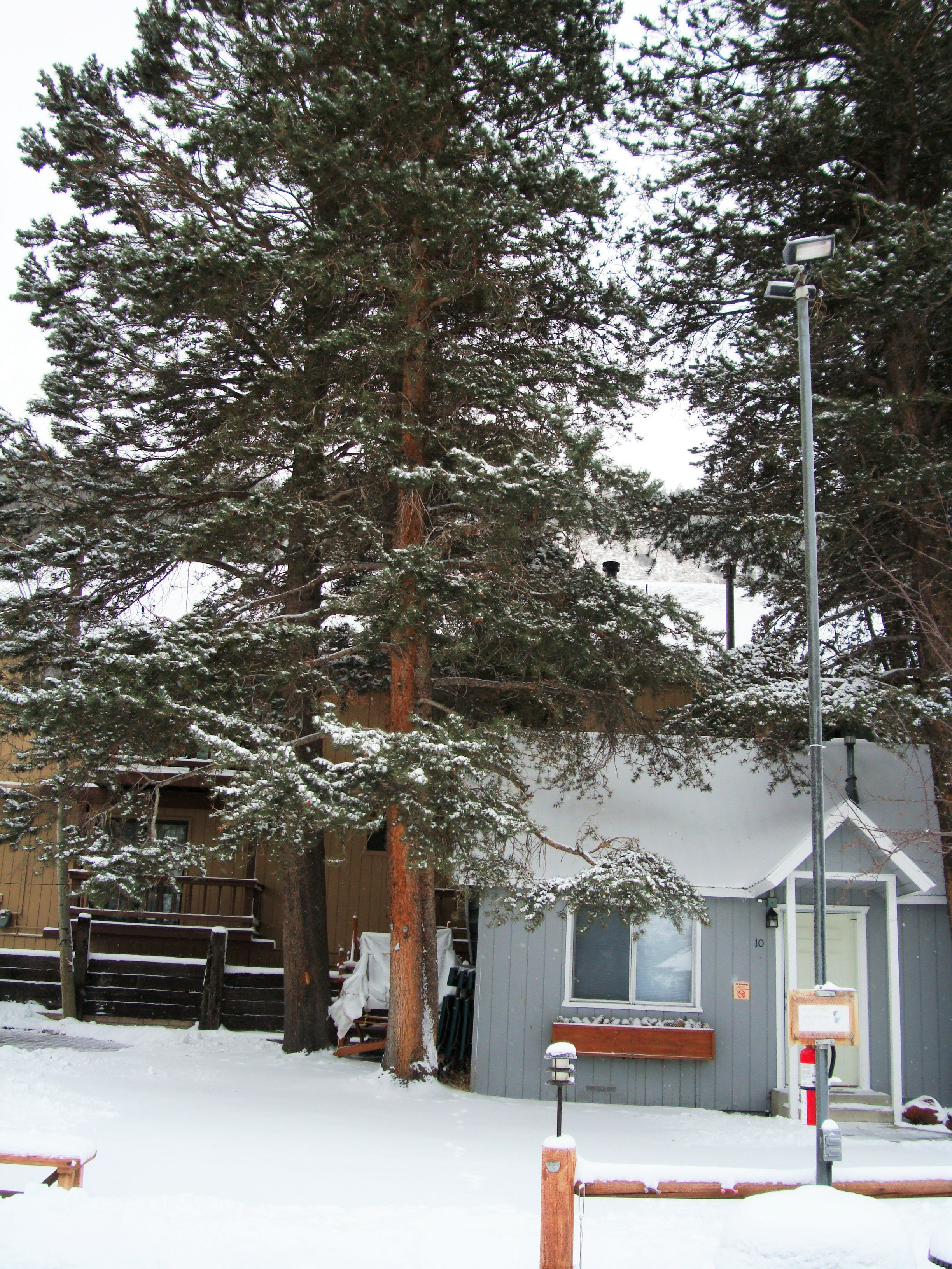 Studio cabin in winter time.