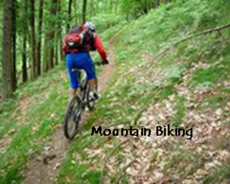 Mountain biking June Lake