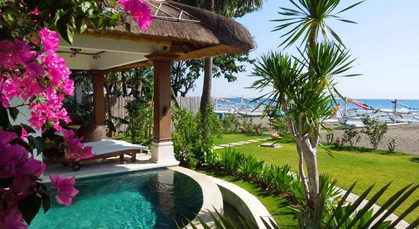 palm garden amed