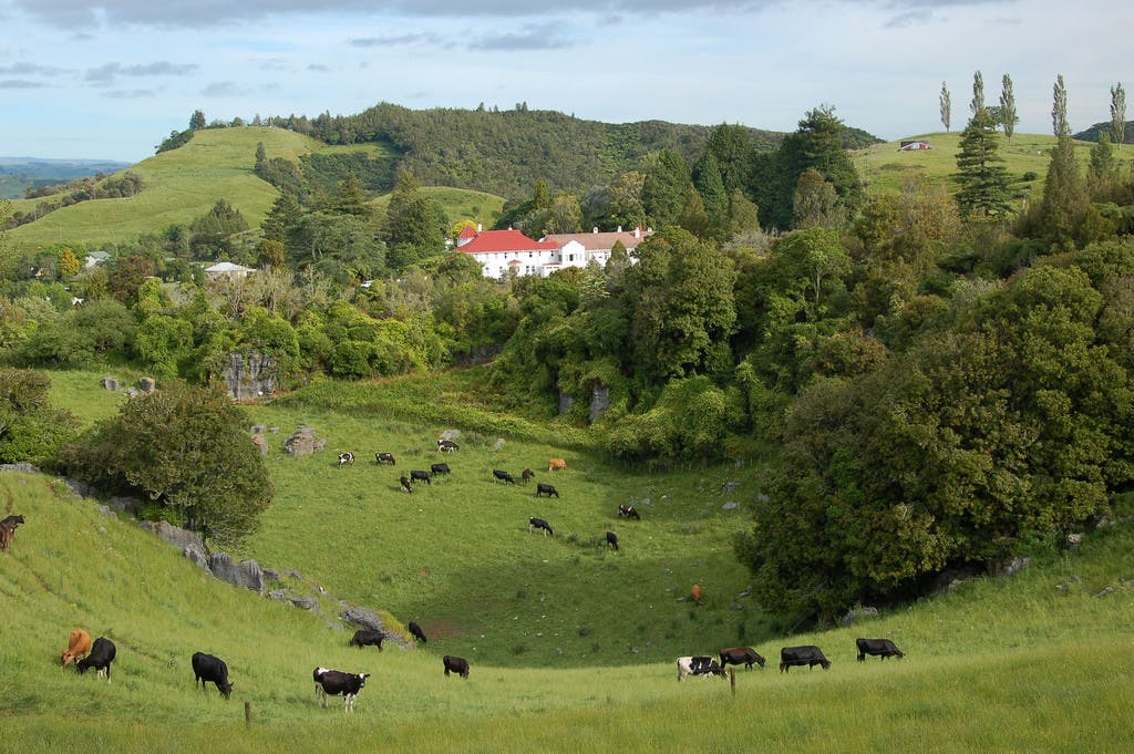 Waitomo caves Hotel, scenic views