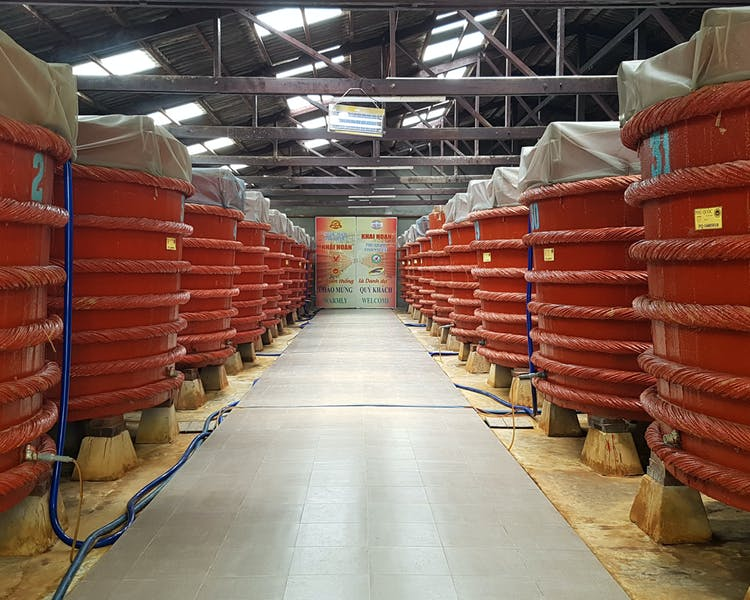 Phu Quoc Fish Sauce Tour of Vats