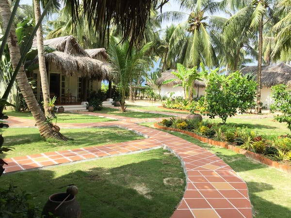 Garden Double View Pathways and Tropical Trees
