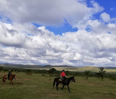 Olepangi Farm - Horse safaris