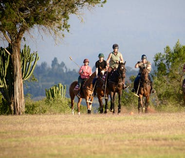 Olepangi Farm - Learn to play polo.