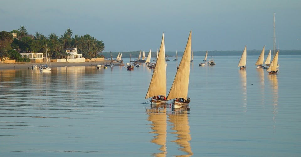 Olepangi Farm - Our Favourite Places - Lamu