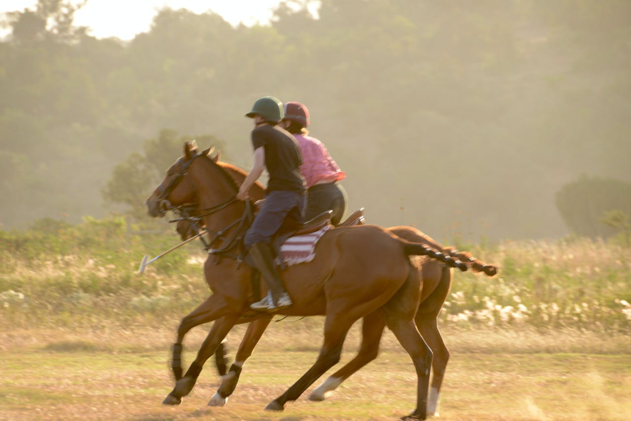 Olepangi Farm - Playing polo