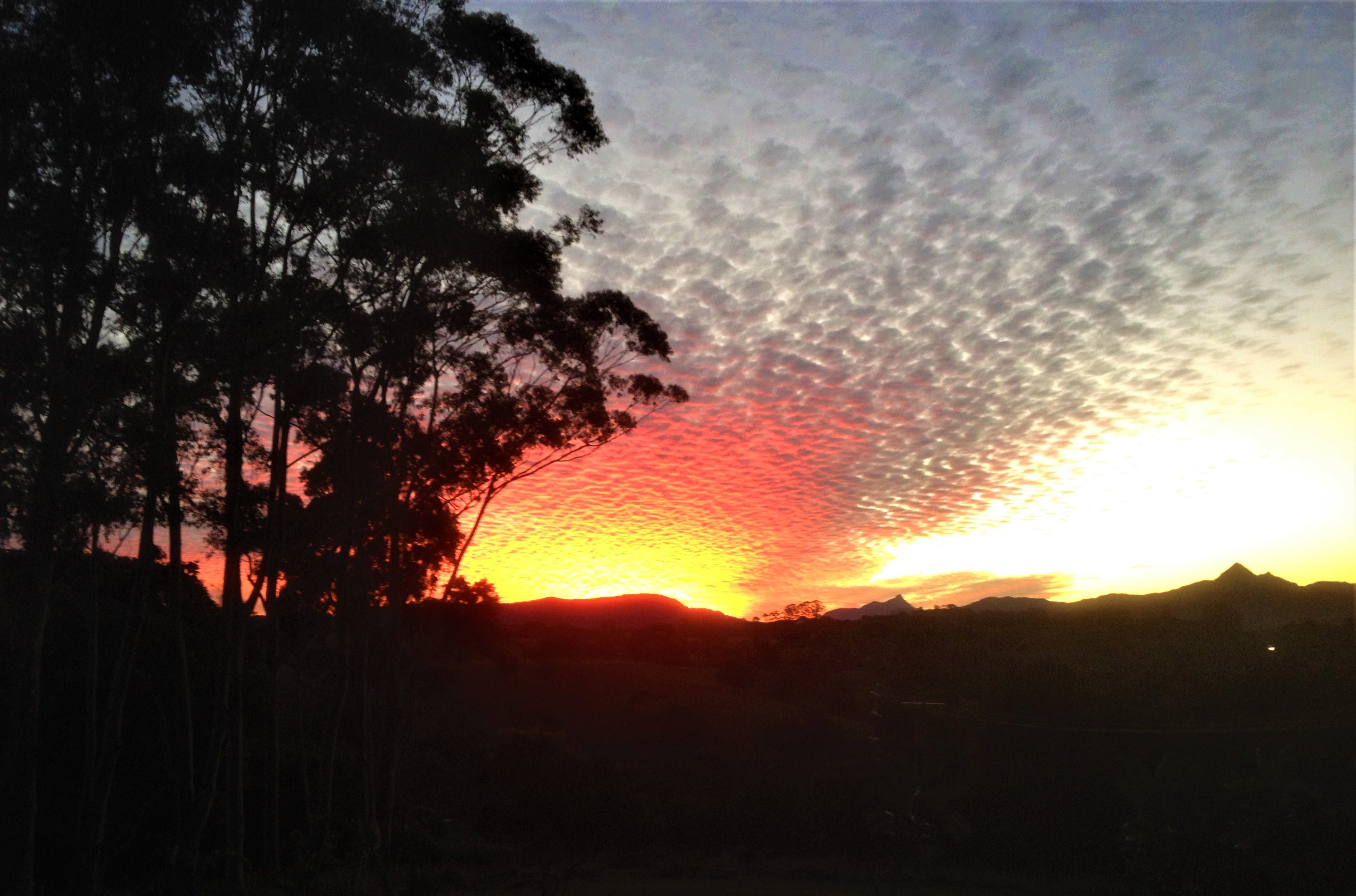 Sunset over the Nightcap Ranges