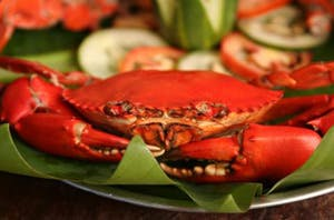 Lally and Abet Restaurant serves sumptuous seafood dishes