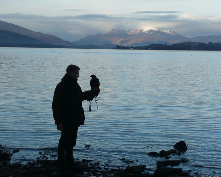 Loch Lomond Hawk Walk