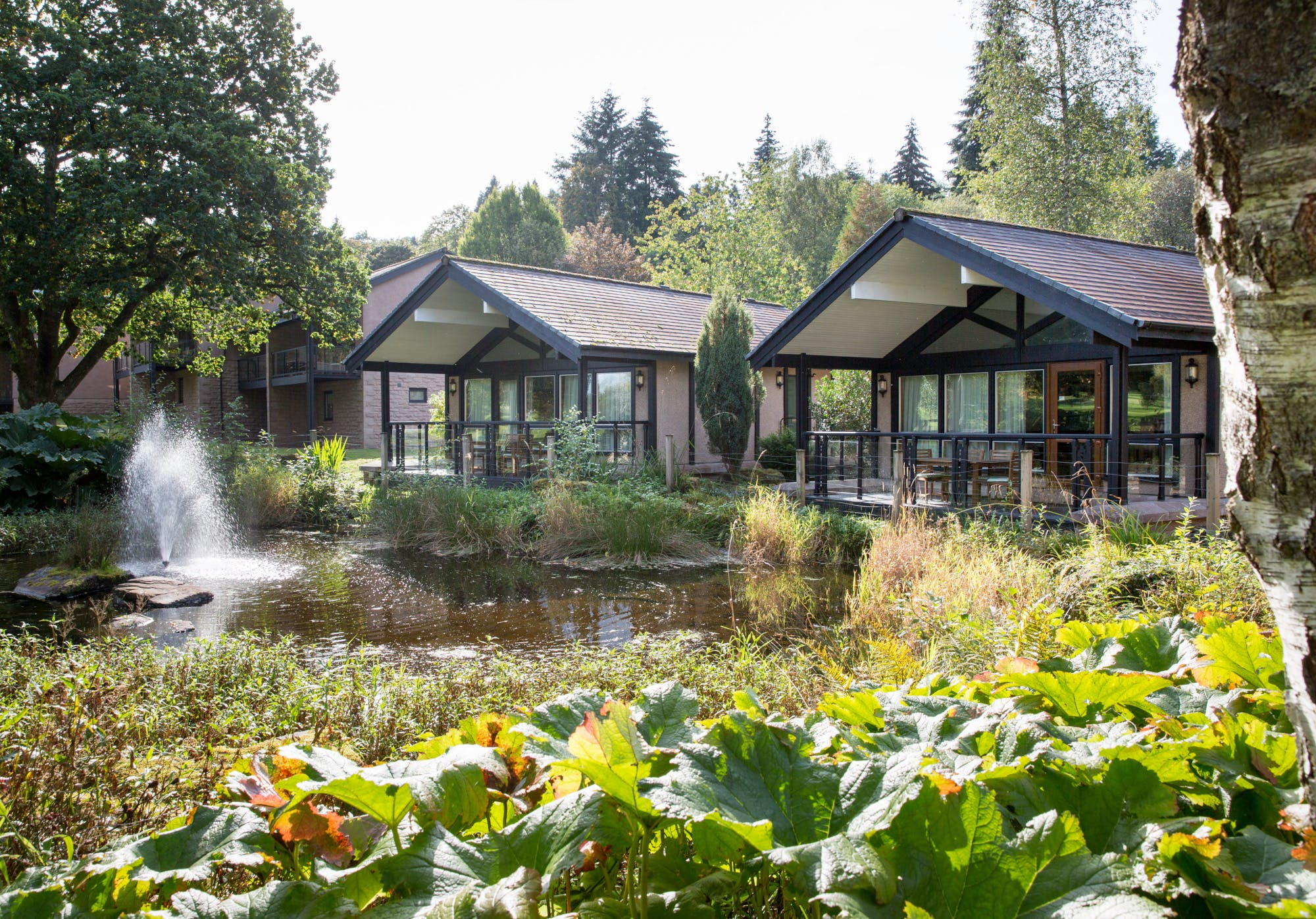 Cameron House lodges around the pond