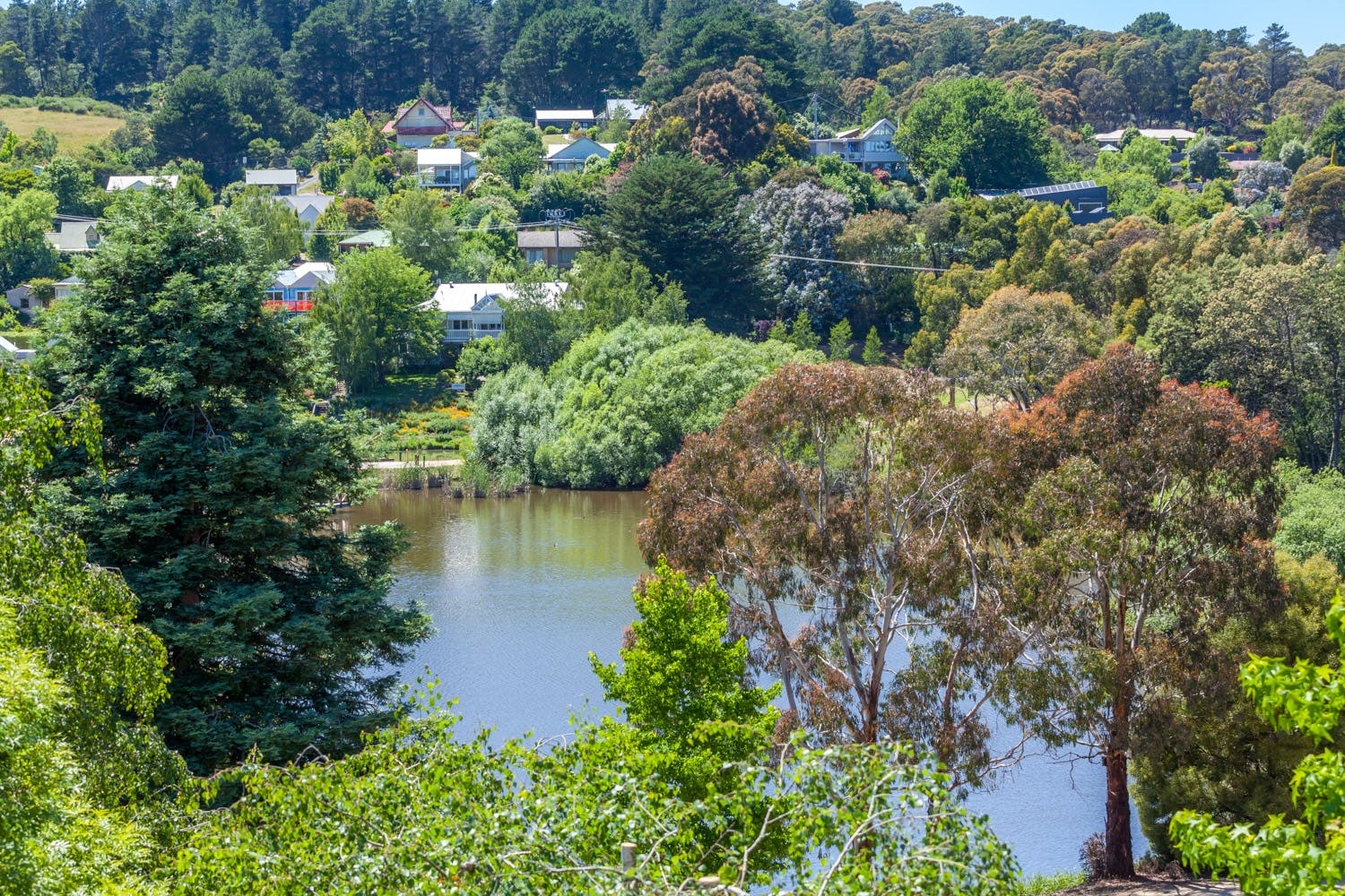 Lake Daylesford view