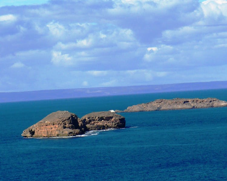 Haystack & Seal Islands - Innes National Park