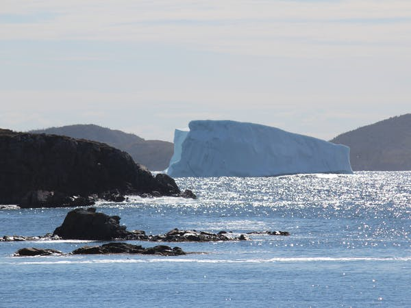 Twillingate Newfoundland ocean view accommodations, best location in Newfoundland iceberg