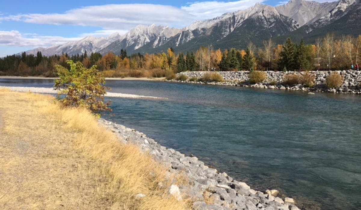Hike or bike along the Bow River in Canmore and Banff