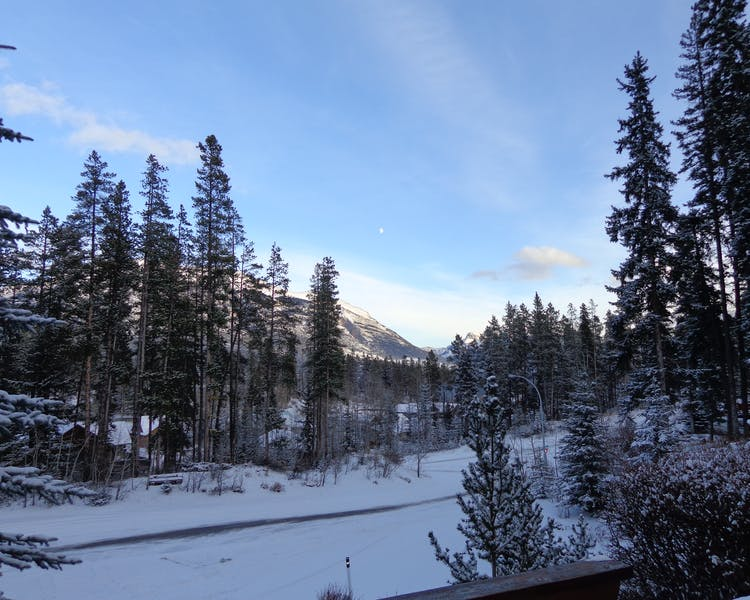 Looking out a sunny winter morning scene in Canmore