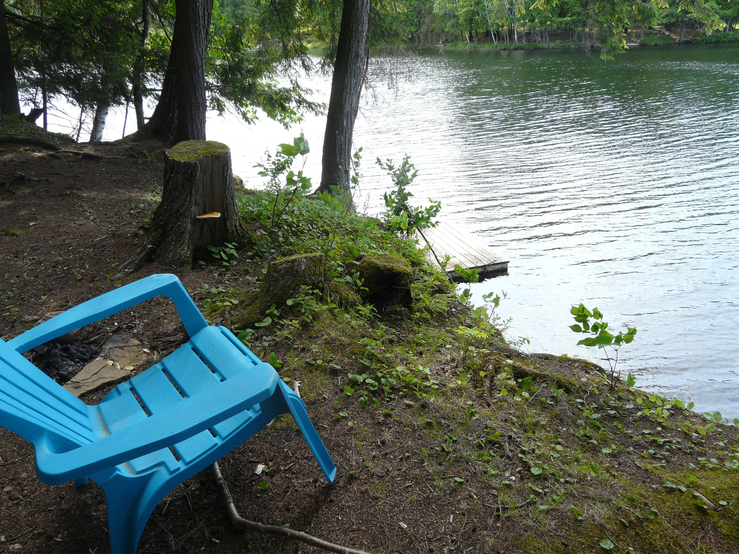 Relax by the shore of Walker Lake in Muskoka near Huntsville and Algonquin Park