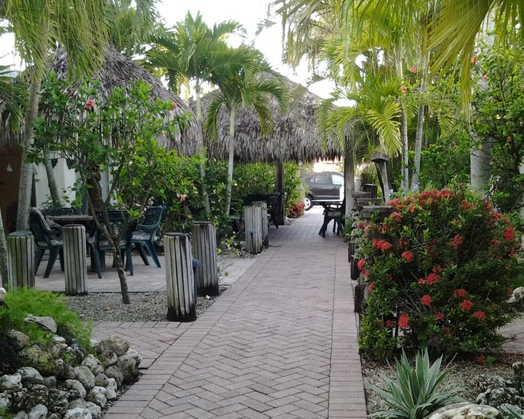 Paved walkway through our tropical courtyard garden