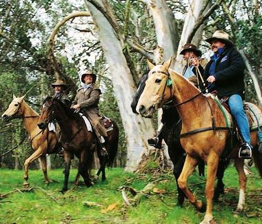 Horse riding is offered locally