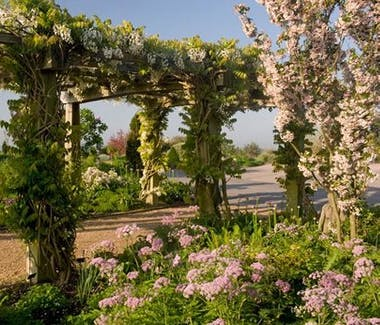 RHS Hyde Hall gardens - View of pergola covered in climbing flowers