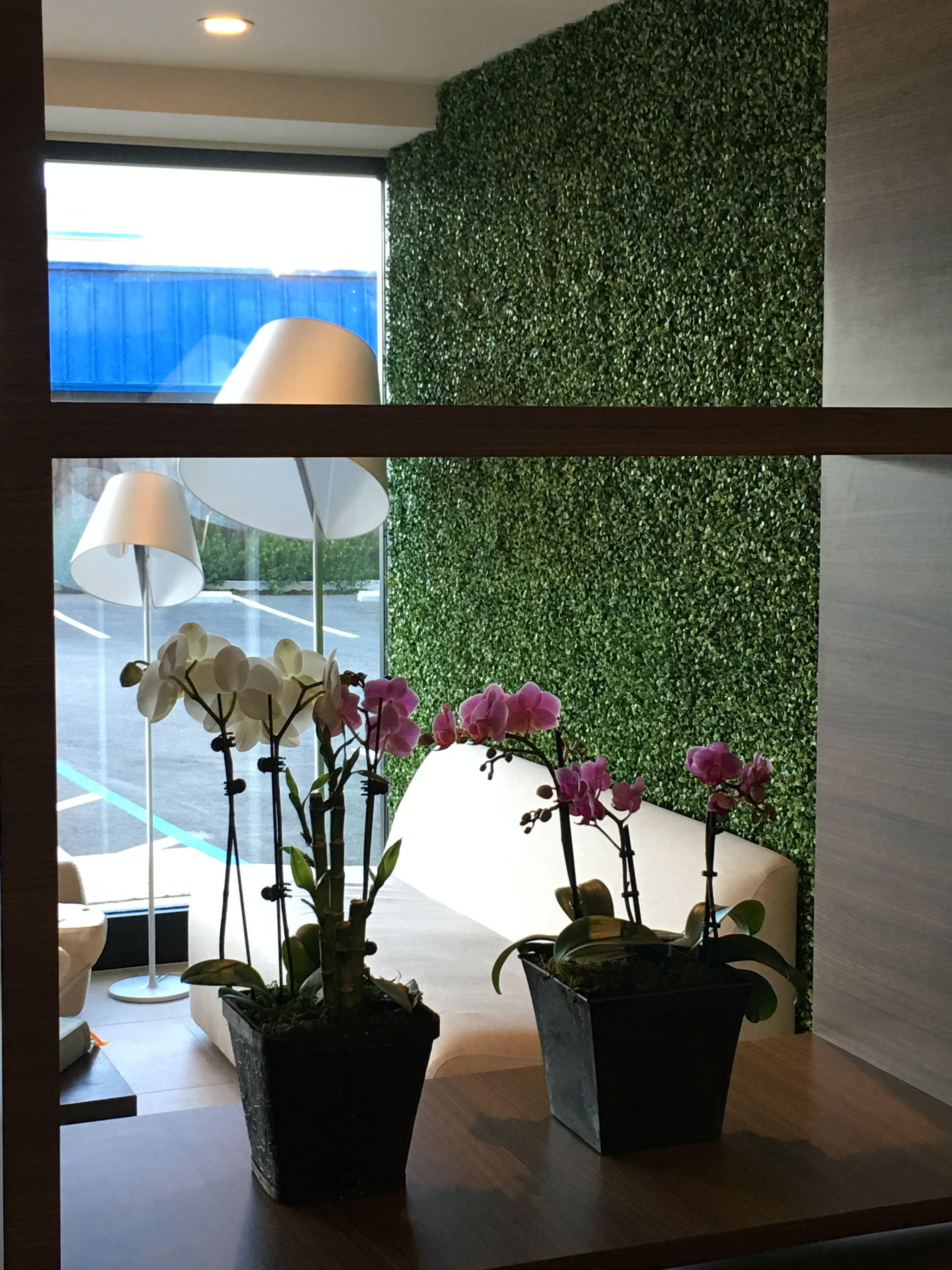 Pretty Orchid in The Dylan Hotel lobby