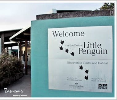 Penguin Centre in Burnie