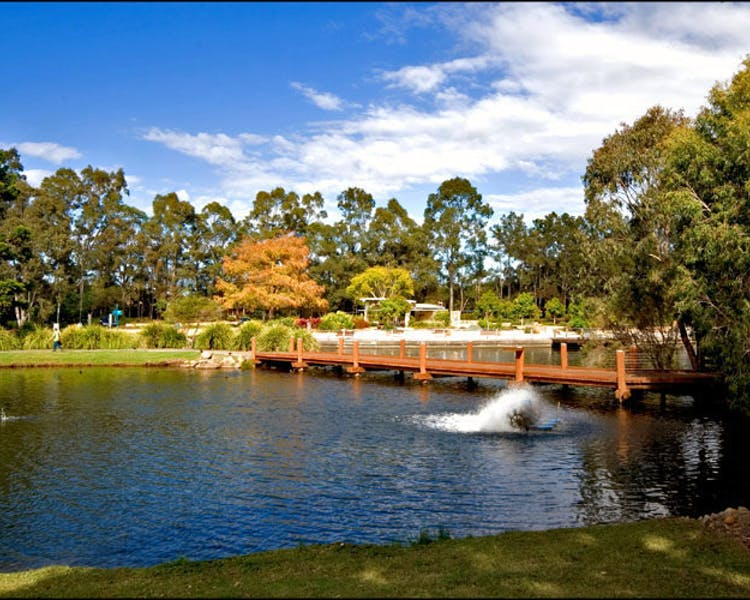 Gold Coast Botanical Gardens