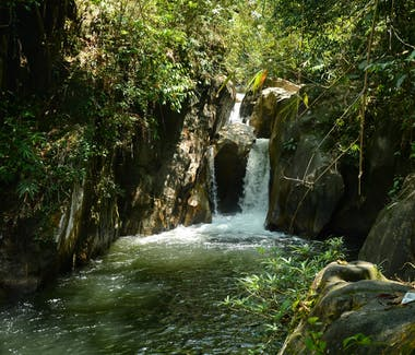 Crystal clear water flowing down with the sound of nature in the rainforest