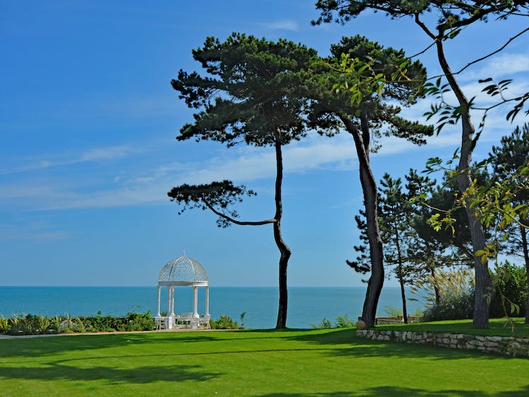 Haven Hall Hotel gazebo and pine trees in the sun