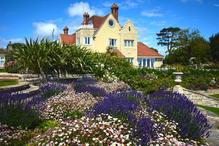 Haven Hall Hotel lavender & flower terraces