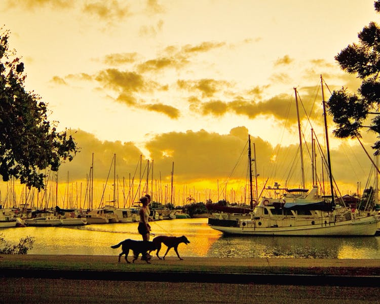 Wynnum Manly  esplanade - pet freindly accommodation Brisbane