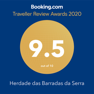 booking.com traveller award