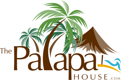 The Palapa House