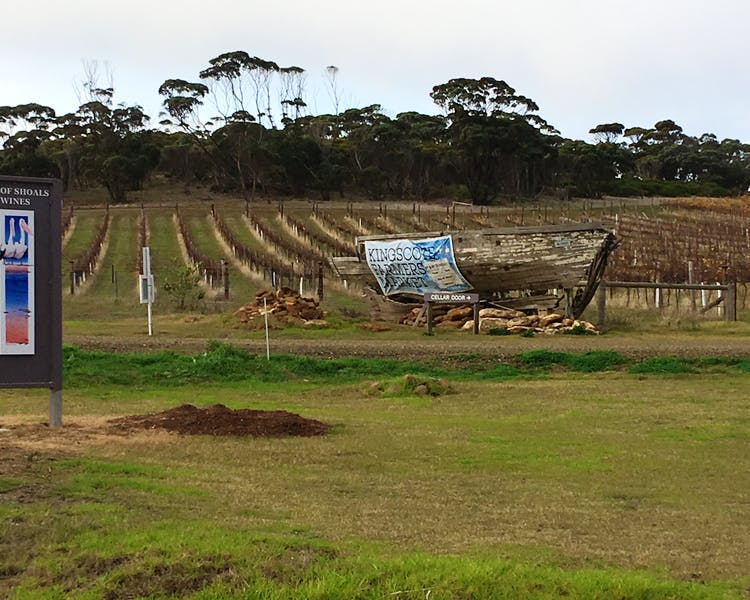 Bay of Shoal Wines